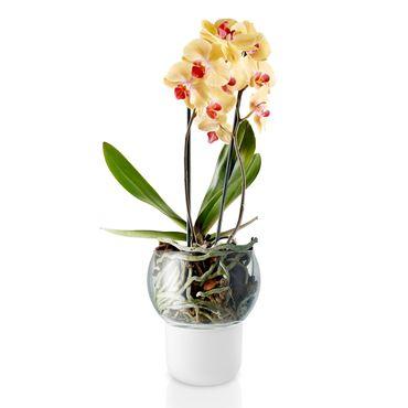 Eva Solo Orchideentopf selbstbewässernd aus frosted Glas D 15 cm